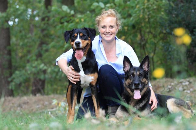 Therapiehunde in Ausbildung